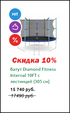 Батут Diamond Fitness Internal 10FT с лестницей (305 см)